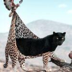 Julien Tabet artista mostra o que os animais fazem quando nao estamos olhando 50
