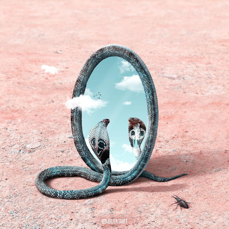 Julien Tabet artista mostra o que os animais fazem quando nao estamos olhando 6