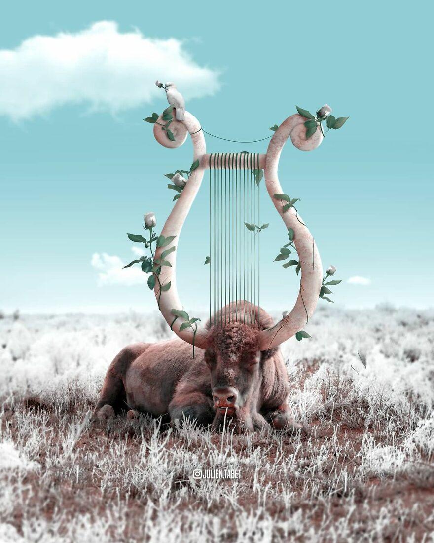 Julien Tabet artista mostra o que os animais fazem quando nao estamos olhando 8