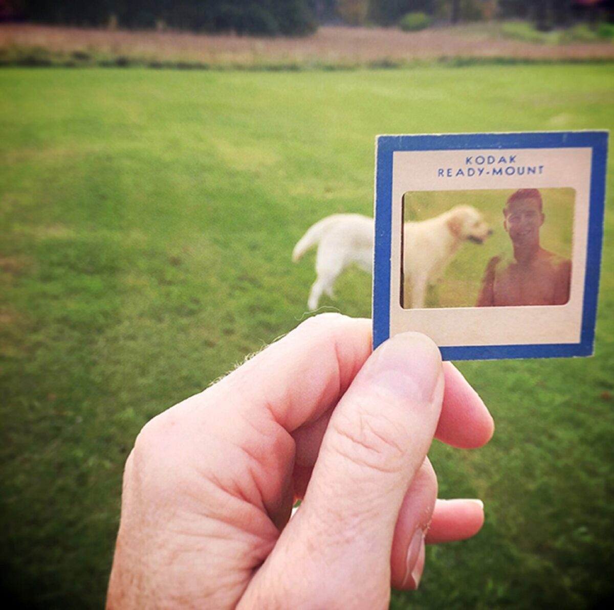 No Memory is Ever Alone projeto usa fotografias para mostrar a passagem do tempo 7