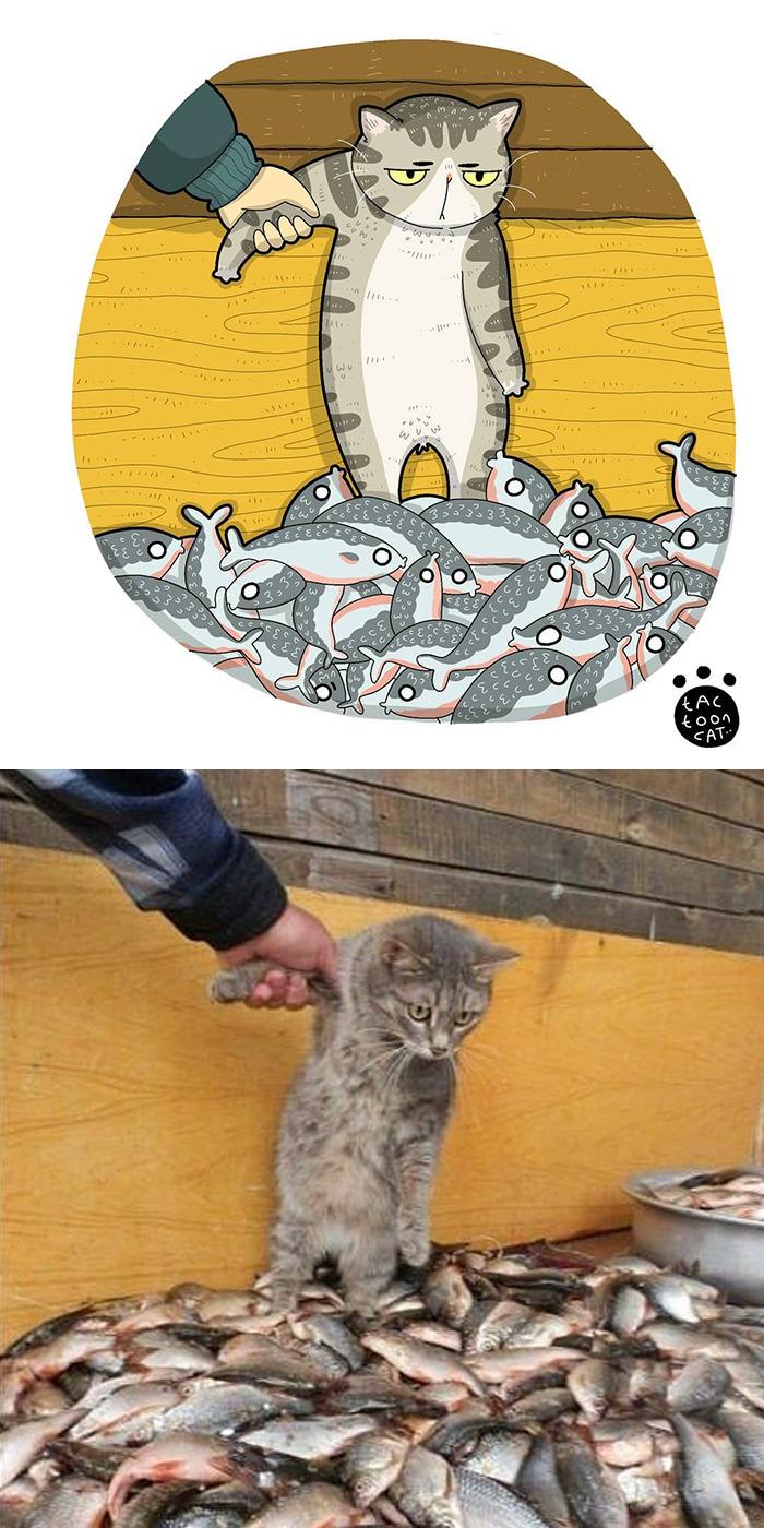 Tactoonca artista indonesio redesenha memes de gatinhos 1