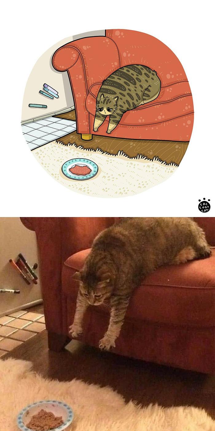 Tactoonca artista indonesio redesenha memes de gatinhos 7