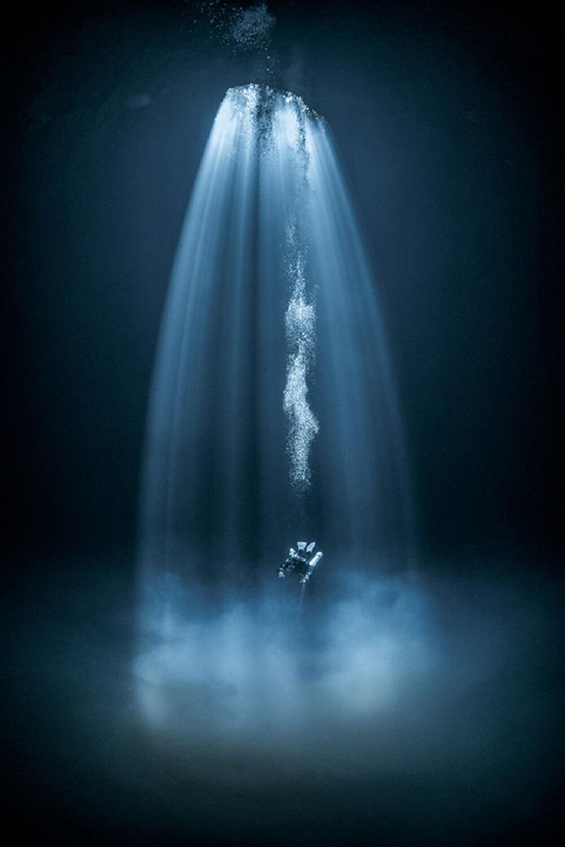 Through Your Lens Underwater Photo Contest confira as melhores fotos submersas de 2020 12