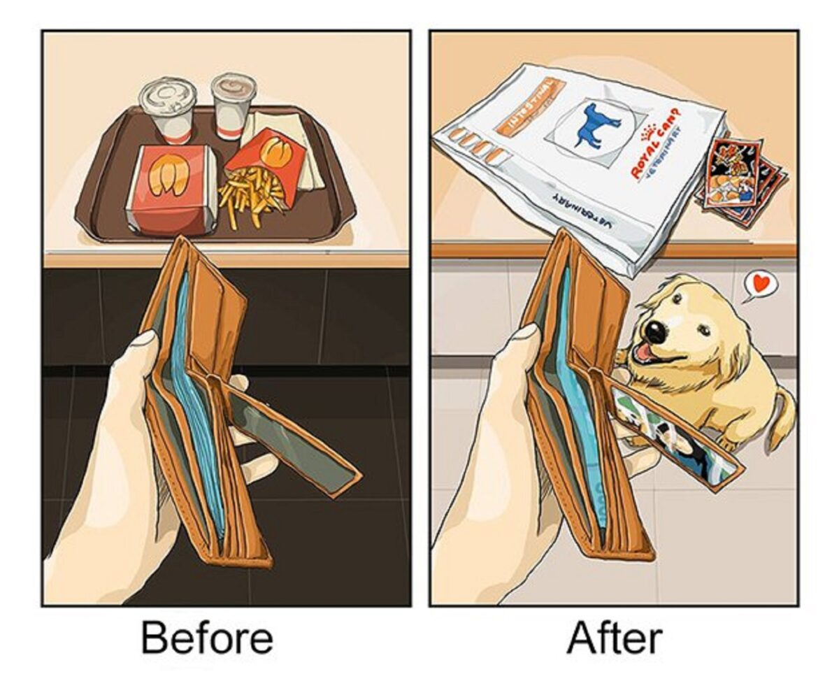 artista cria serie de ilustracoes mostra o antes e depois da vida com um pet 1