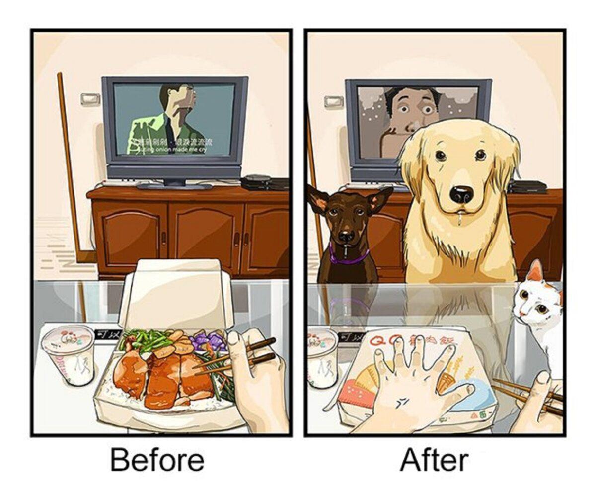 artista cria serie de ilustracoes mostra o antes e depois da vida com um pet 4