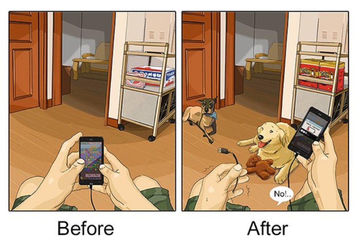 artista cria serie de ilustracoes mostra o antes e depois da vida com um pet 6