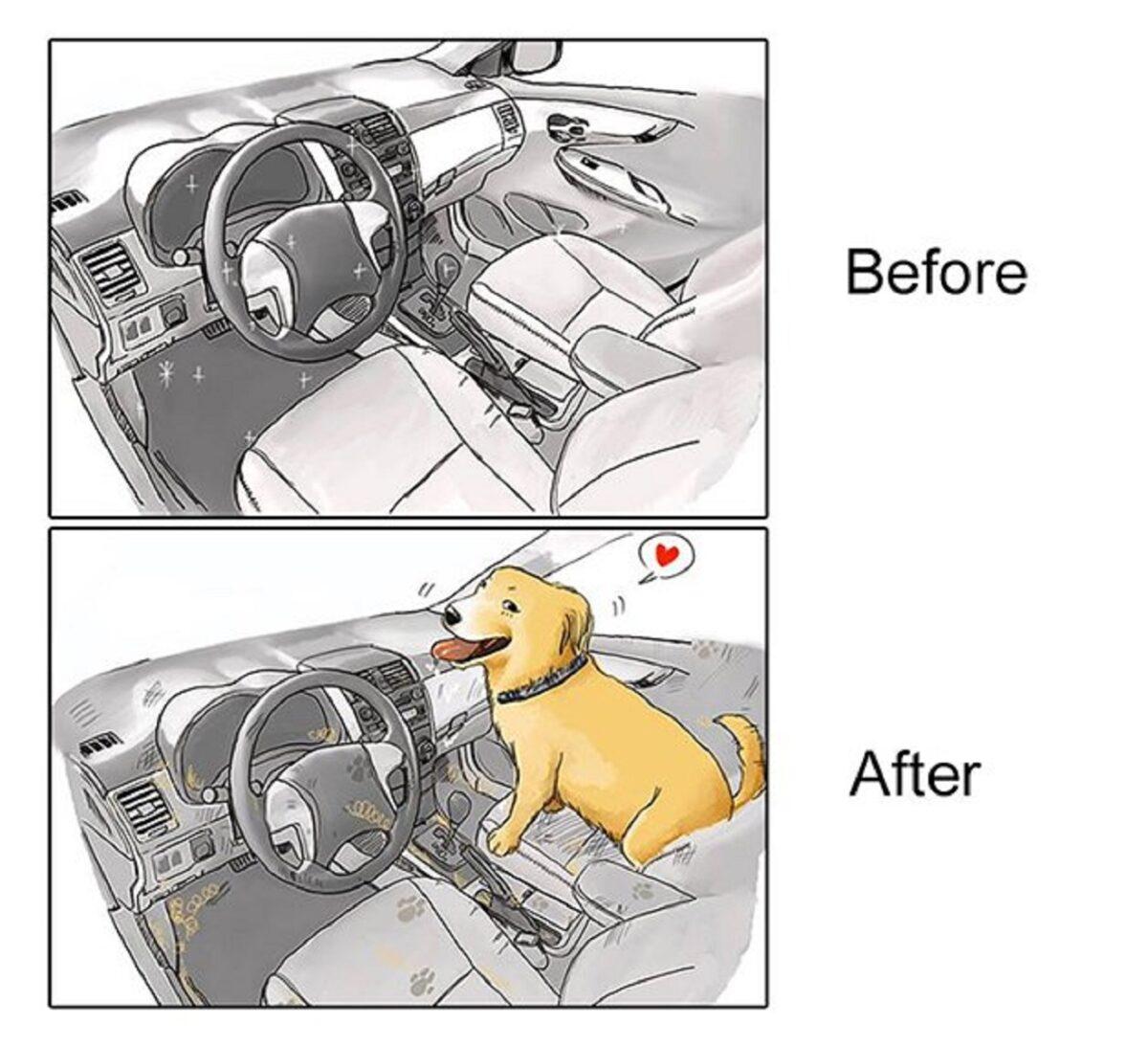 artista cria serie de ilustracoes mostra o antes e depois da vida com um pet 7