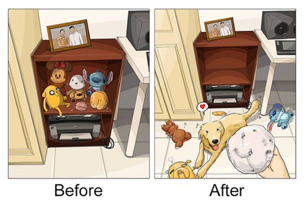 artista cria serie de ilustracoes mostra o antes e depois da vida com um pet 8