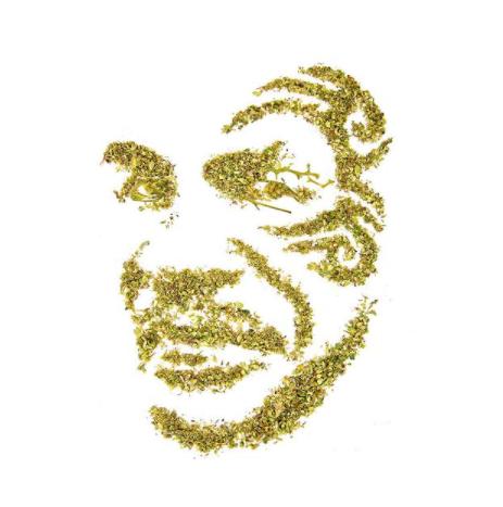 Cannabiscapes artistas fazem retratos com maconha 1