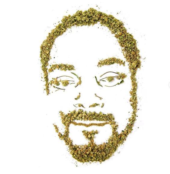 Cannabiscapes artistas fazem retratos com maconha 3