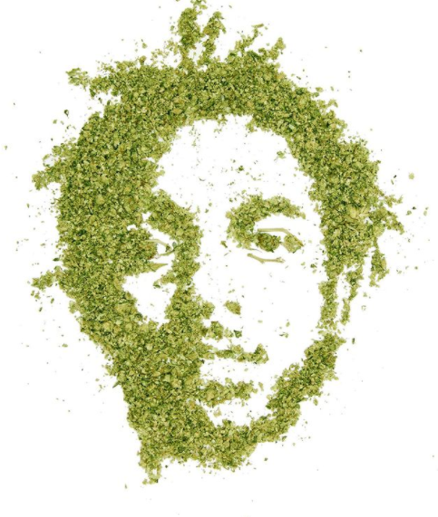 Cannabiscapes artistas fazem retratos com maconha 4