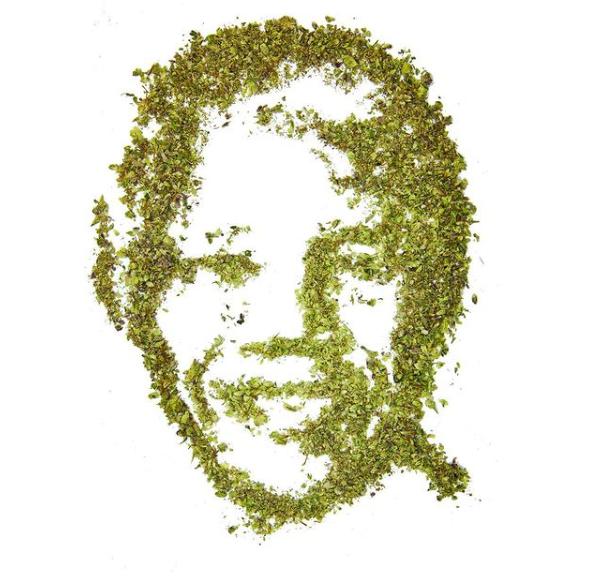 Cannabiscapes artistas fazem retratos com maconha 6