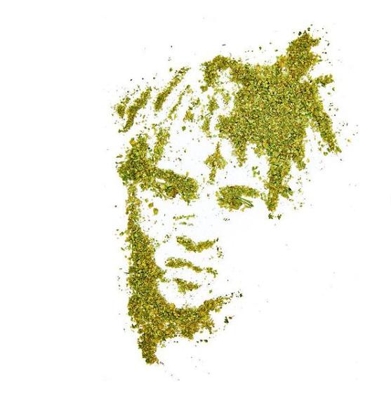Cannabiscapes artistas fazem retratos com maconha 8