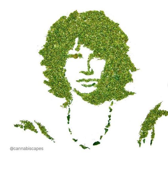 Cannabiscapes artistas fazem retratos com maconha 9