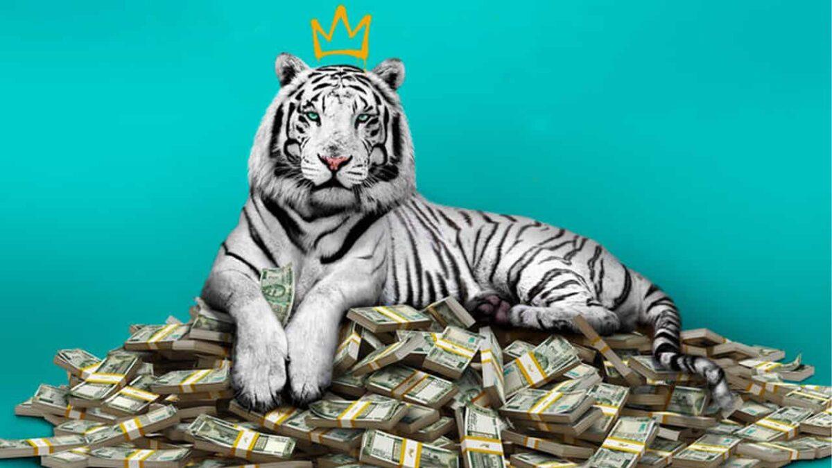 Critica O Tigre Branco Netflix