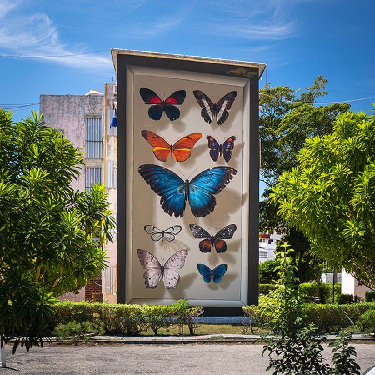 Mantra artista desenha borboletas em paredes de diversas cidades pelo mundo 10
