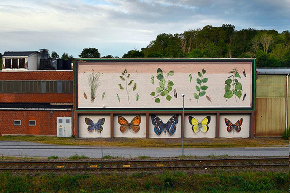 Mantra artista desenha borboletas em paredes de diversas cidades pelo mundo 4