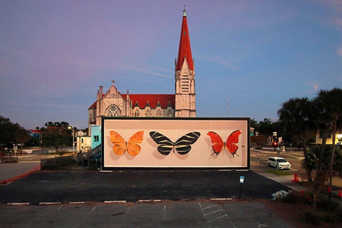 Mantra artista desenha borboletas em paredes de diversas cidades pelo mundo 6