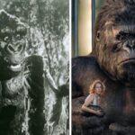 Remakes do cinema veja a evolucao dos efeitos especiais no seculo XXI 50