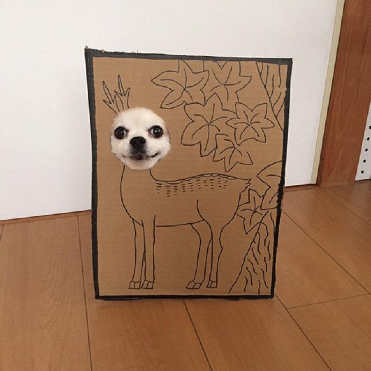 Mametaro perfil do Instagram posta fantasias de papelao de Halloween para cachorros 4