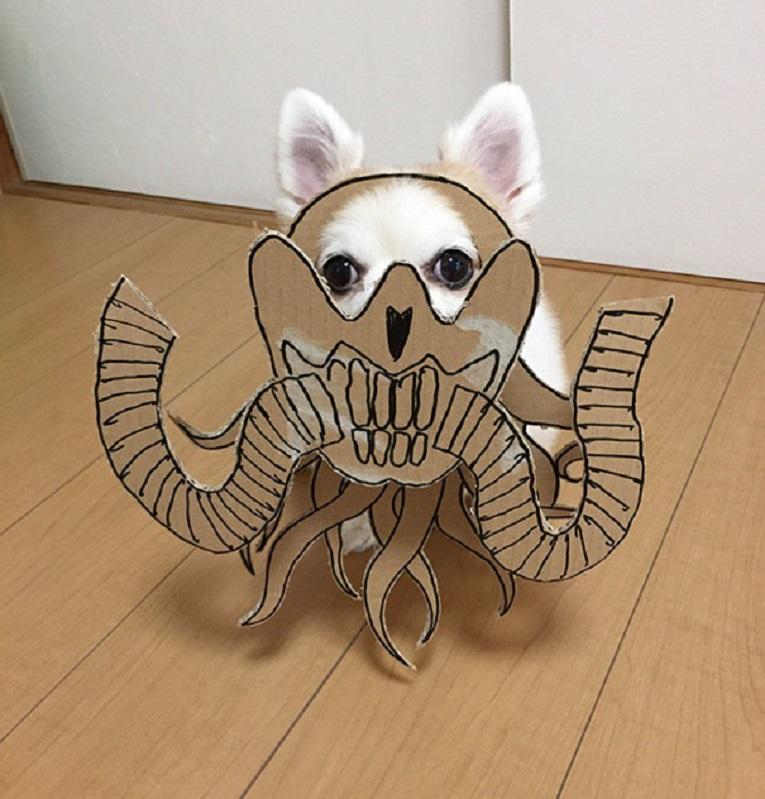 Mametaro perfil do Instagram posta fantasias de papelao de Halloween para cachorros 6