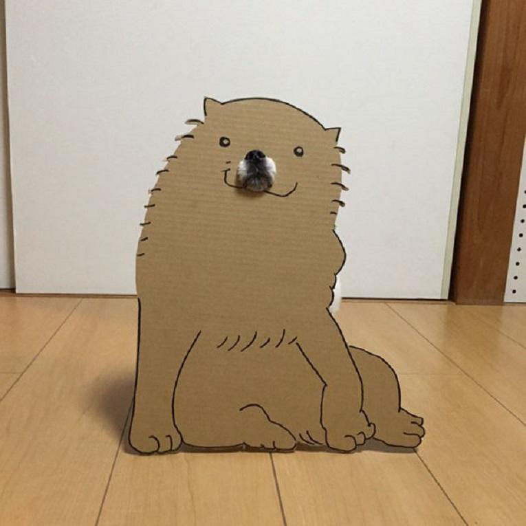 Mametaro perfil do Instagram posta fantasias de papelao de Halloween para cachorros 9