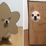 Mametaro perfil do Instagram posta fantasias de papelao de Halloween para cachorros CAPA